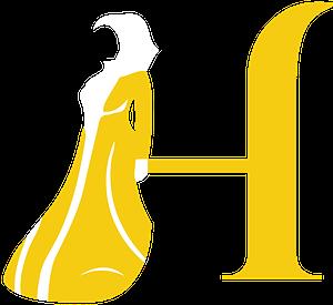 4D Hijabi Logo Icon